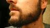 Todds_beard_oct2008_002_2