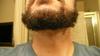 Todds_beard_oct2008_003_2